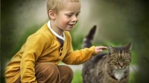 Ограничить контакты с уличными животными
