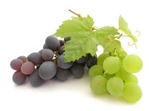 Виноград при меланоме