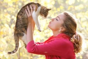 Что нужно знать о заражении человека от кошки лишаем
